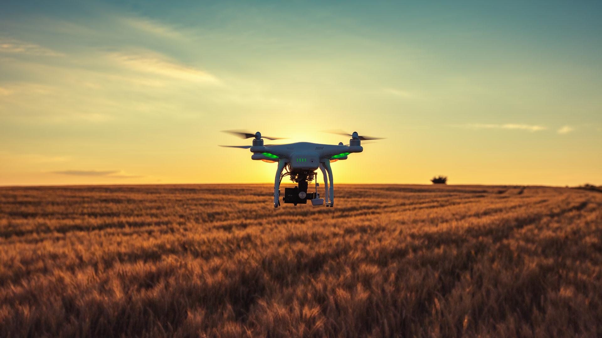 Drone Scaligera